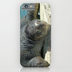 Turtle Ashore Slim Case iPhone 6s