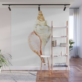 Large Shell Wall Mural