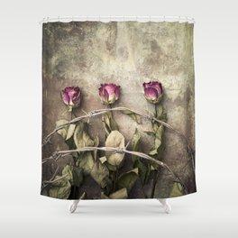 Three dried roses and barbed wire Shower Curtain