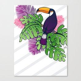 Tropical Toucan Design Canvas Print