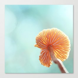Tiny Tropical Cricket Canopy Canvas Print