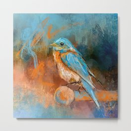 A Splash Of Bluebird Metal Print