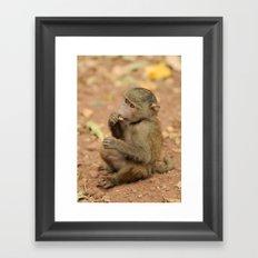 Lil' Baboon Framed Art Print