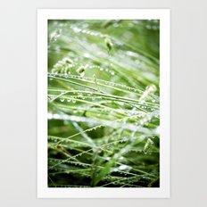 When the Rain Falls - Green Art Print
