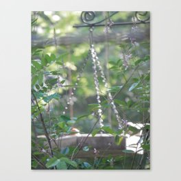 The Feeder in Soft Light Canvas Print