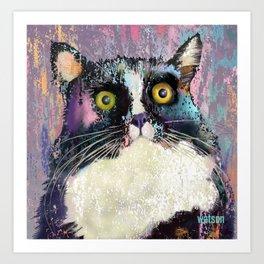 Big eyed tuxedo cat Art Print