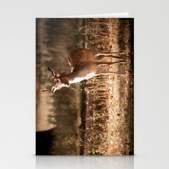 Deer in the Park Stationery Cards