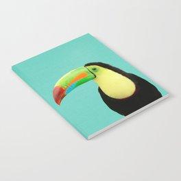 Toucan Bird - Blue Notebook