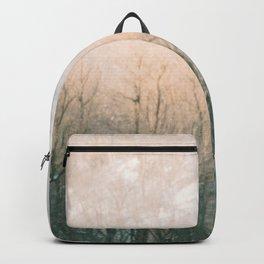 Bald Eagle Backpack