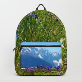 Mountain,meadow,valley art Backpack