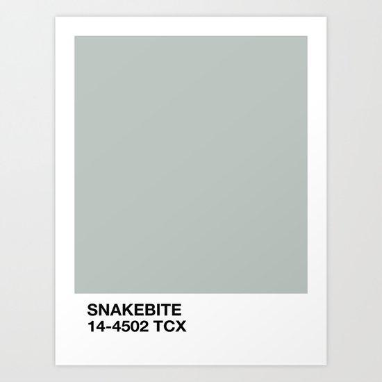 snakebite by shvvdes