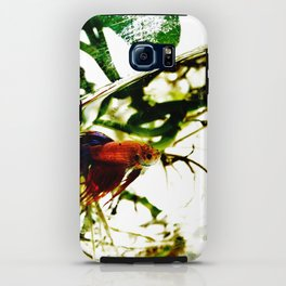 A Fish Named Earl iPhone Case
