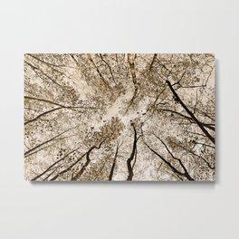 Sepia fall Metal Print