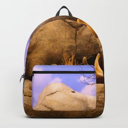 Lions XVII Backpack