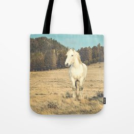 Storms and Light Tote Bag