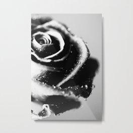 Rose BW Metal Print