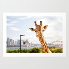 Giraffe with a View Art Print