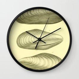 Vintage Clam Diagram Wall Clock
