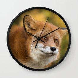 Autumn Fox II Wall Clock