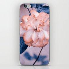 feel iPhone Skin