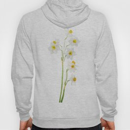white narcissus watercolor Hoody