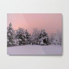 Pink Winter Sky (with swingset) Metal Print