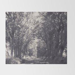 Tunnel of Trees - Kauai, Hawaii Throw Blanket