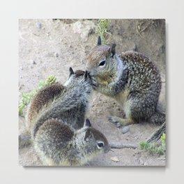 Ground Squirrel Chatter Metal Print