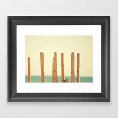 Salitre Framed Art Print
