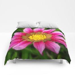 Dipladenia Comforters