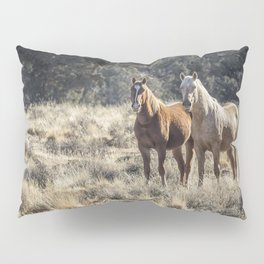 The Vanguard Pillow Sham