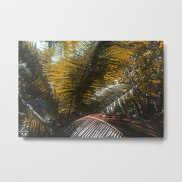 Into the Seychellian leaves Metal Print