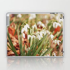 Snowdrops Laptop & iPad Skin