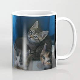 1, 2 & 3 of 8 DPG150830a Coffee Mug