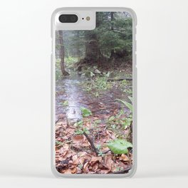 Forest lake - Tatra National Park Clear iPhone Case