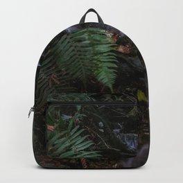 sasamat stream Backpack