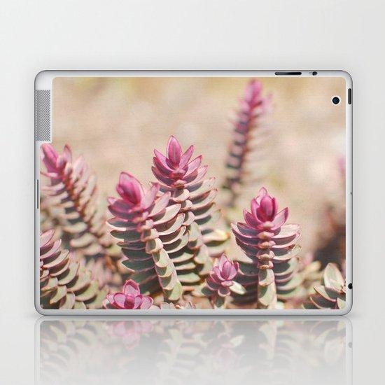 Hebe Laptop & iPad Skin