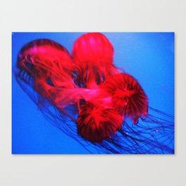 Underwater Ballerinas Canvas Print