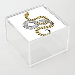 Gold Snake Acrylic Box
