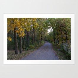 Illinois Autumn Trail Art Print