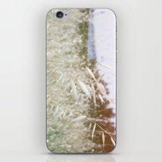 In The Hills iPhone & iPod Skin