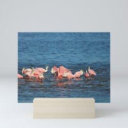 Roseate Spoonbills Mini Art Print