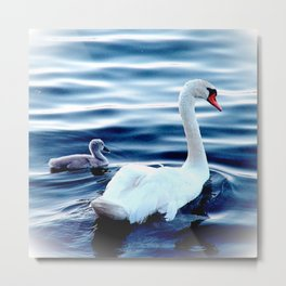 Swans On The Lake Metal Print