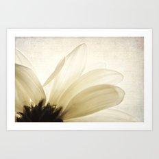 Translucent Art Print