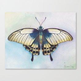 Butterfly Prayer Canvas Print