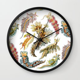 Ernst Haeckel - Nudibranchia (Snails) Wall Clock