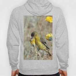 Mr. Lesser Goldfinch Feeds on Seeds Hoody