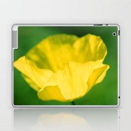 Meconopsis cambrica Laptop & iPad Skin