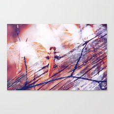 Dragonfly :: Twiggy Canvas Print