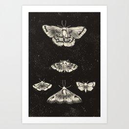 maria (3) Art Print